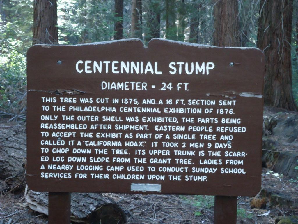 Centennial Stump